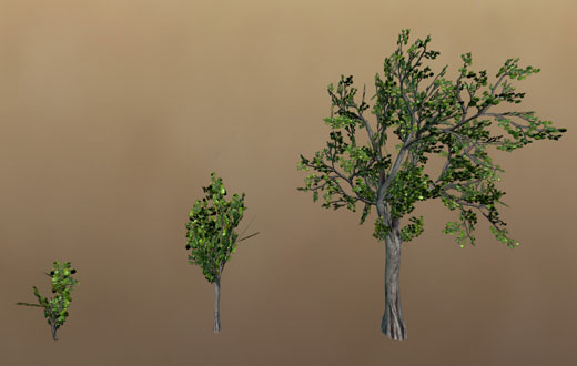 Trees of different ages