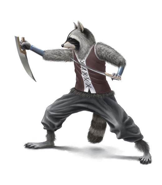 Ninja Raccoon